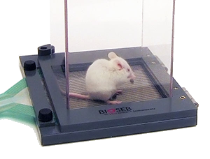 Bioseb's Dynamic Weight Bearing Test for Rats and Mice